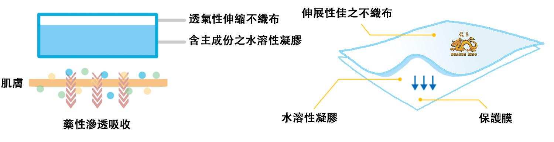 龍王水溶性凝膠痠痛藥用貼布 Dragon King Medicated Plaster 水溶性凝膠 Hydrogel